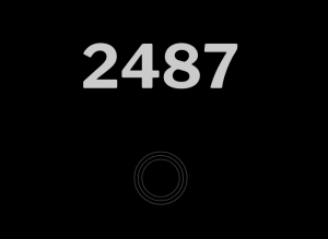 Screen shot of the numbers 2487 in black and grey.